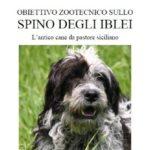 copertina-spino_degli_iblei