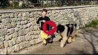 video_conan